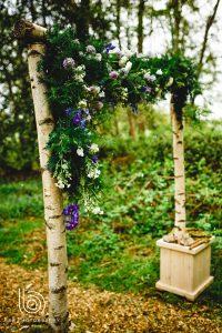 Birch Archway Nadia Di Tullio