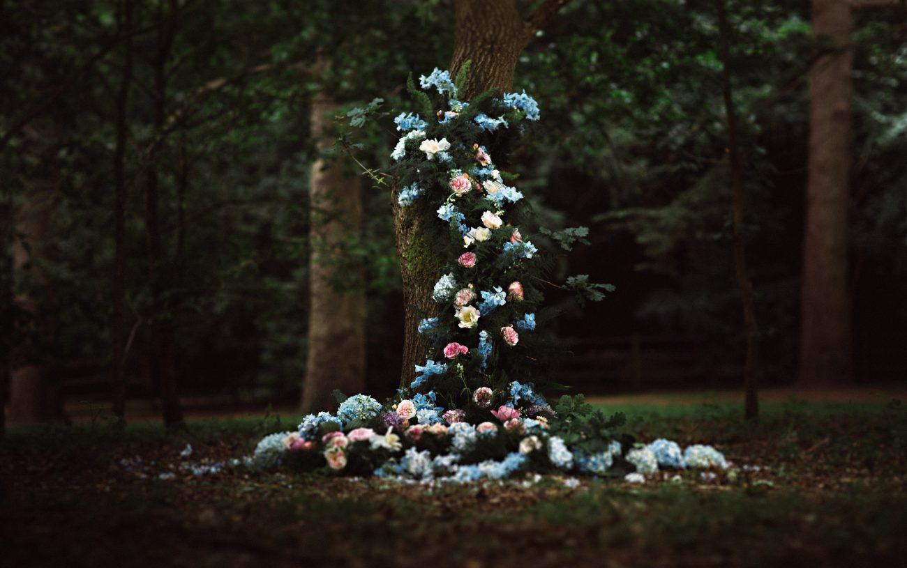 Clumber Park HBA Nadia Di Tullio Flowers